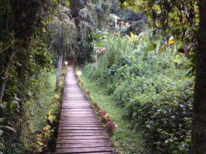 walk ways